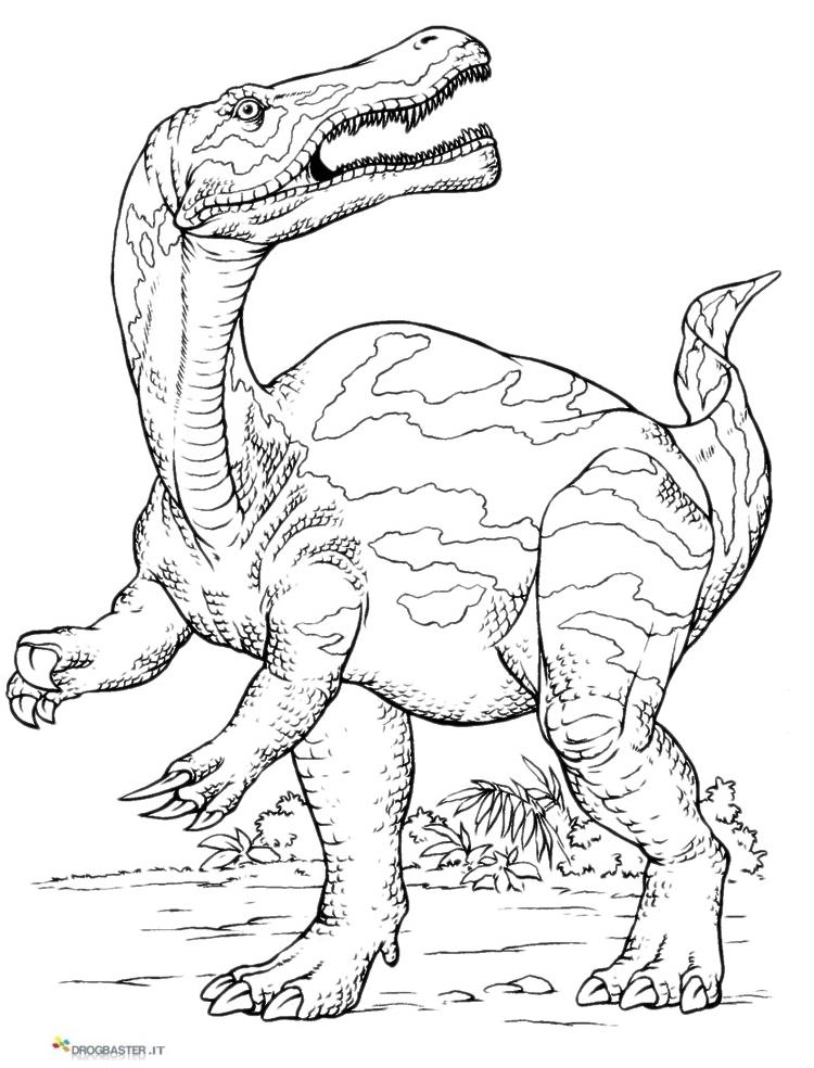 Disegni Da Colorare Gratis Dinosauri.Disegni Dei Dinosauri Da Stampare Gratis
