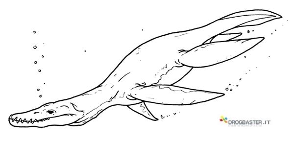 Disegni dei dinosauri da stampare gratis for Disegni marini da colorare