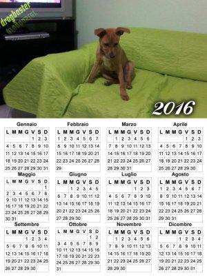 Calendario con cucciolo di cane sul divano