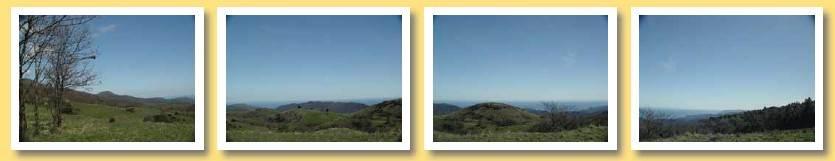 quattro foto con panorama della montagna