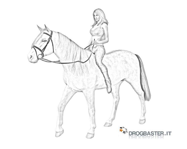 Cavallo immagini e disegni da stampare for Immagini di cavalli da colorare