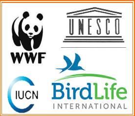 organizzazioni internazionali: WWF,FAO, I.U.C.N. e birdlife